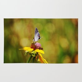 Brown Eyed Susan & Hairstreak Butterfly Rug