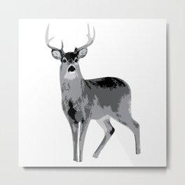 Whitetail Metal Print