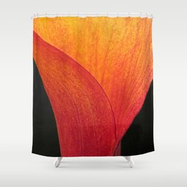Contemporary Fiery Calla Lily Flower Floral Art A409 Shower Curtain