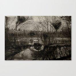 Bear Pond Canvas Print