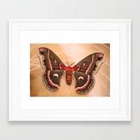 moth Framed Art Prints featuring Moth by KunstFabrik_StaticMovement Manu Jobst