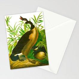 Canada Goose John James Audubon Vintage Scientific Birds of America Illustration Stationery Cards