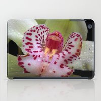 orchid iPad Cases featuring Orchid by Vitta