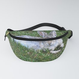 Rabbit in grass. Fanny Pack