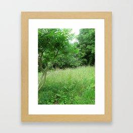 Reve Framed Art Print