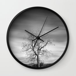 Lonely tree. Road to the mountains Wall Clock