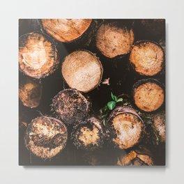 Rustic Firewood Metal Print