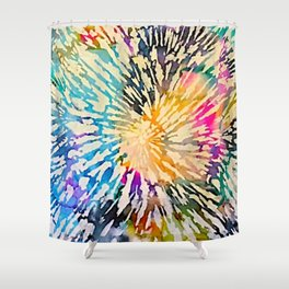 Multi Color Explosion Shower Curtain