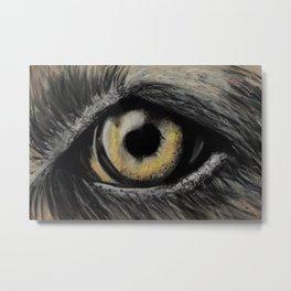 A Dog Eye, Amazing eyes, a pet, original art by Luna Smith Art, LuArt Gallery Metal Print