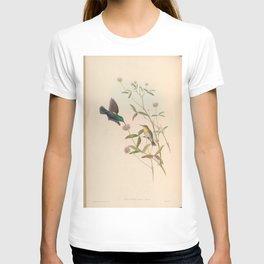 Jericho Sun bird2 T-shirt