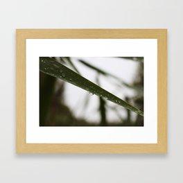 Drop 1 Framed Art Print