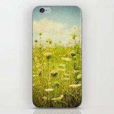 Make Your Own Path iPhone & iPod Skin