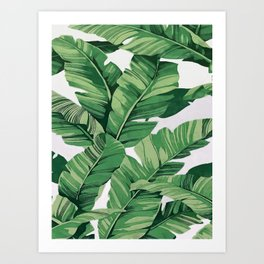 Tropical banana leaves VI Art Print