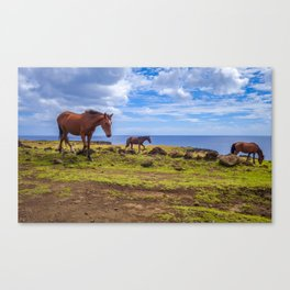 Horses on easter island cliffs Canvas Print