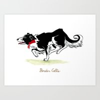 border collie Art Prints featuring Border Collie by Monica McClain