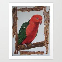 King Parrot Art Print