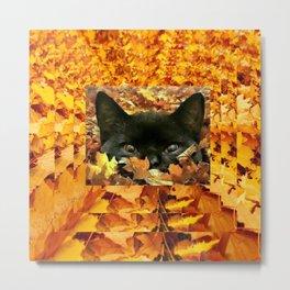 Autumn Peek-A-Boo Black Cat Metal Print