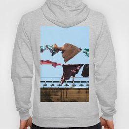 Hanging laundry in blowing wind Hoody