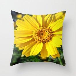 California Sunflower Throw Pillow