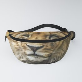 The young lion Fanny Pack