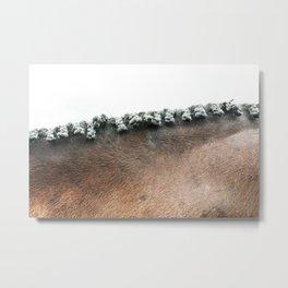 Neck  Metal Print