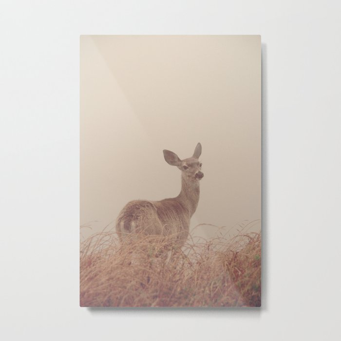 Hello my deer Metal Print