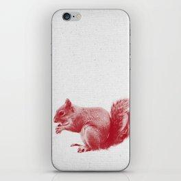 Squirrel 01 iPhone Skin