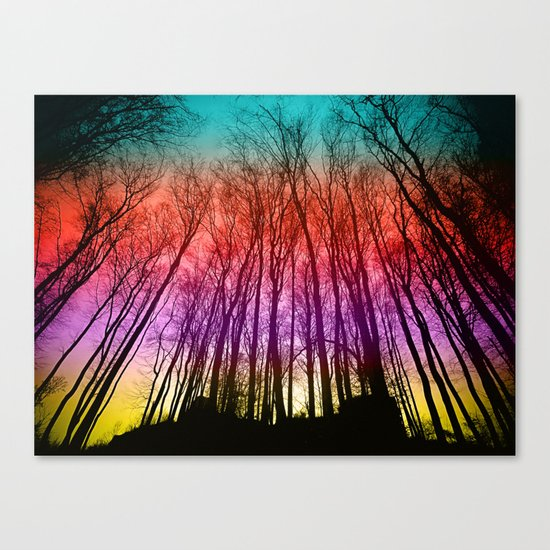 Colorful forest silhoutte Canvas Print