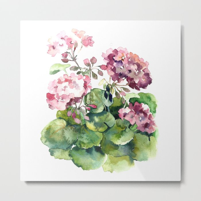 Watercolor pink geranium flowers aquarelle Metal Print
