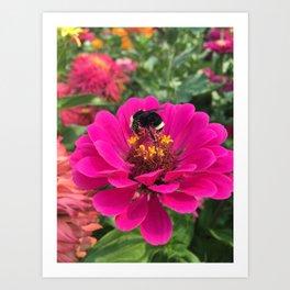 Pollen Covered Bee Art Print