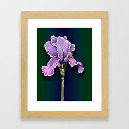 Purple Iris, Flower, Floral Art Framed Art Print