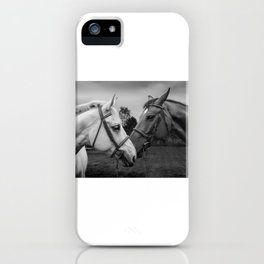 Horses of Instagram II iPhone Case