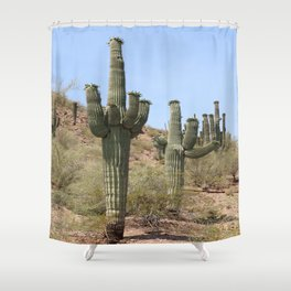 A Cacti in the Desert Shower Curtain