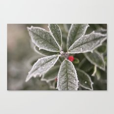cold Canvas Print