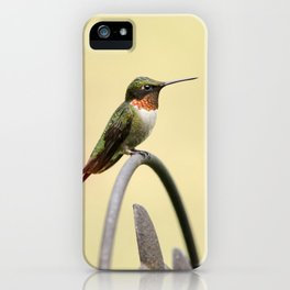 Tiny Hummingbird iPhone Case