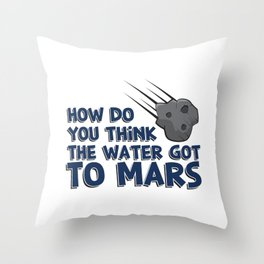 How Do You Think The Water Got To Mars Asteroid Gift Throw Pillow