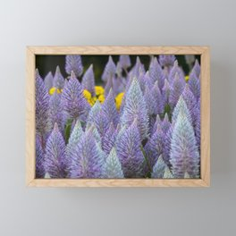 Fox tail Flowers Framed Mini Art Print