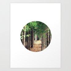 Wonderwoods Art Print