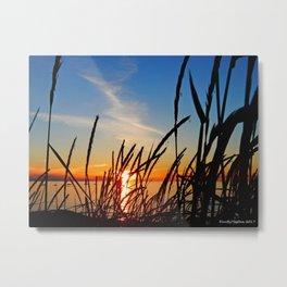 Sunset Through the Beach Grass Metal Print
