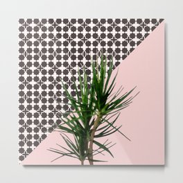 Dracaena Plant on Pink and Lattice Pattern Wall Metal Print