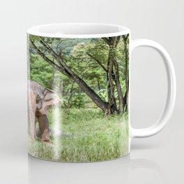 Asian Elephant in the Field, Thailand Coffee Mug