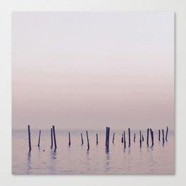 Sea Wanderers Canvas Print