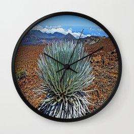 Silversword  Wall Clock