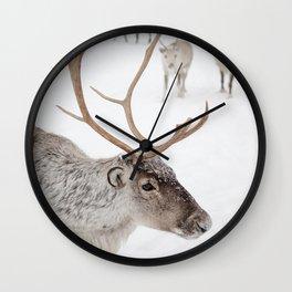 Reindeer With Antlers Art Print | Tromsø Norway Snow Photo | Travel Photography Wall Clock