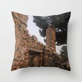 028 Throw Pillow