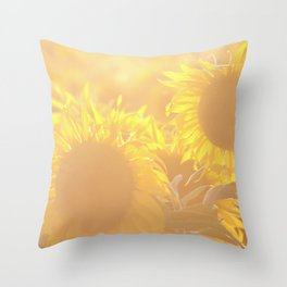 Glowing in Sunlight Sunflower Photography Throw Pillow