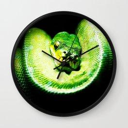 Painted Snake Wall Clock
