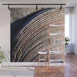seashell semicircle Wall Mural
