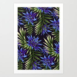 Aechmea Fasciata - Blue/Green Art Print