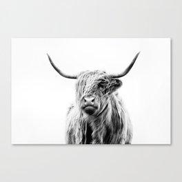 portrait of a highland cow (horizontal) Leinwanddruck